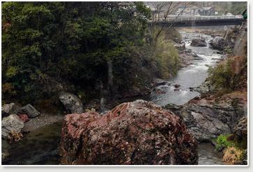 キジの飼育場の横には四万十川の源流に続く谷川が流れます