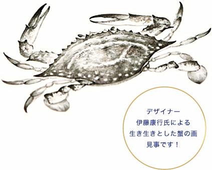 デザイナー伊藤康行氏による生き生きとした蟹の画。見事です!