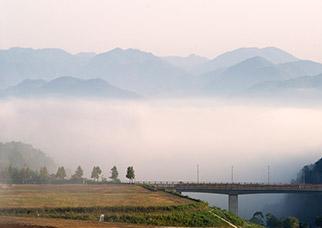 兵庫県の丹波、篠山、三田の地域は、松茸(マツタケ)をはじめ、三田牛や丹波栗・丹波黒豆などの秋の恵みの名産地です