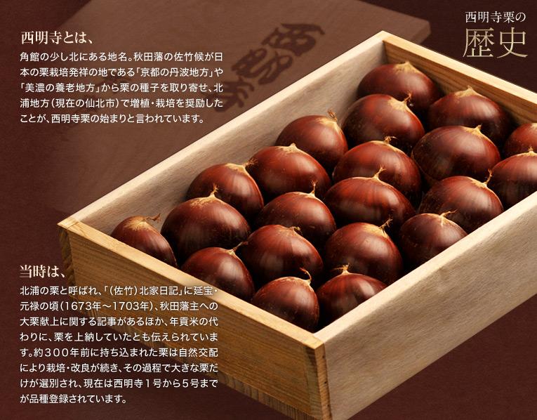 【西明寺栗の歴史】 西明寺とは角館の少し北にある地名。秋田藩の佐竹候が日本の栗栽培発祥の地である「京都の丹波地方」や「美濃の養老地方」 から栗の種子を取り寄せ、北浦地方(現在の仙北市)で増植・栽培を奨励したことが、西明寺栗の始まりと言われています。当時は北浦の栗と呼ばれ、「(佐竹)北家日記」に延宝・元禄の頃(1673年〜1703年)、秋田藩主への大栗献上に関する 記事があるほか、年貢米の代わりに、栗を上納していたとも伝えられています。約300年前に持ち込まれた栗は自然交配により栽培・改良が続き、その過程で大きな栗だけが選別され、現在は西明寺 1号から5号までが品種登録されています。