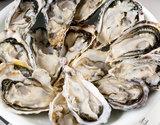兵庫県室津産『殻付き牡蠣(生食用)』 2kg(22〜30個入) 牡蠣剥きナイフ付の商品画像