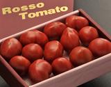 形状不揃い『ロッソトマト』愛知県産 2S〜2Lサイズ 約1.2kgの商品画像