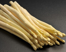 収穫でき次第順次出荷◇ 斎藤さんのスーパーホワイトアスパラガス 『綺羅』 Lサイズ 約500g ※冷蔵