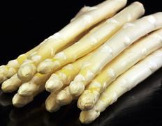 収穫でき次第順次出荷◇ 斎藤さんのスーパーホワイトアスパラガス 『綺羅』 2Lサイズ 約500g※冷蔵