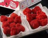 『あまおういちご』福岡県八女産 G(グランデ)約270g×2パック ※冷蔵の商品画像