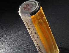 収穫でき次第順次出荷◇ ホワイトアスパラガス ピクルス 黒酢風味『綺羅』使用 (約100g×1瓶 化粧箱入)※無添加 ※冷蔵