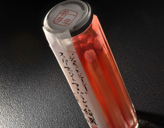 収穫でき次第順次出荷◇ ホワイトアスパラガス ピクルス 梅しそ風味  『綺羅』使用 約100g×1瓶 化粧箱入 ※冷蔵