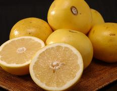 4/13〜18出荷 『ゴールデンクラウングレープフルーツ』フロリダ産 ホワイト(白) 約2.5kg×2箱(1箱:6〜8玉) ※常温