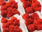 【産地直送】JAふくおか八女『あまおういちご』福岡・八女産 グランデ 約270g×4パック ※冷蔵 の商品画像