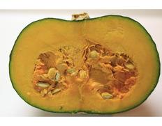 『栗マロンかぼちゃ』長崎・熊本・宮崎産 1玉 1.6kg以上 ※冷蔵