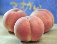 山梨県産 「春日居の桃」 《特秀》 大玉 3玉×2箱 約1.8kg 化粧箱のお取り寄せ通販