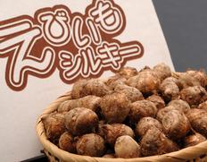 3/2〜7出荷 『えびいもシルキー』 静岡県産里芋 約1kg ※常温