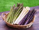 【有機JAS認証】『アスパラガス(グリーンL/M 300g・ホワイト2L 400g・紫2L/L 300g)』北海道産 ※冷蔵の商品画像