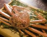 『茹で松葉ガニ(ズワイガニ)』特大サイズ 1杯 活けで1200g級 丹後半島沖産 ※冷蔵の商品画像