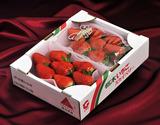 『スカイベリー』栃木県産いちご 約300g(5〜15粒)×2パック ※冷蔵の商品画像