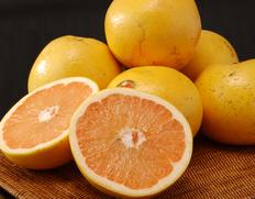 4/13〜18出荷 『ゴールデンクラウングレープフルーツ』フロリダ産 ルビーレッド(赤) 約2.5kg×2箱(1箱:6〜8玉) ※常温