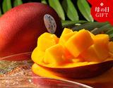 《母の日ギフト》宮崎産完熟マンゴー『時の雫』 3Lサイズ 450g〜509g×2玉 定形メッセージカード・化粧箱入の商品画像
