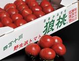 野生派トマト「狼桃」 高知県四万十川産 松ランク 小玉 約700g(28〜45個入り)小箱入り ※冷蔵の商品画像