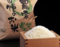 【令和2年産】三重県産 中森さんの『伊賀米 コシヒカリ』 10kg