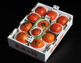 『御所柿3種食べ比べセット』奈良県産 約2kg(目安として9〜12玉、本御所+2種)※常温の商品画像