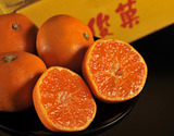橋爪流栽培みかん『俊菓(しゅんか)』 和歌山県産 2S〜Mサイズ 約5kgの商品画像