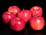 『さしゃ(美丘)』青森県産りんご 特A 約3kg(5〜9玉) ※常温の商品画像