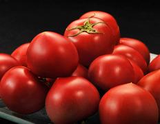 3/2〜7出荷 『スイートピュア』静岡県産フルーツトマト 3S〜2L 約900g(7〜23玉) ※常温