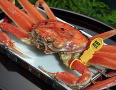 豊洲市場&漁港から直送!新鮮な魚介