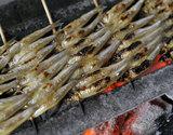 琵琶湖特産 湖鮎(こあゆ)の炭火焼 (5〜7尾×20串)  ※冷蔵の商品画像