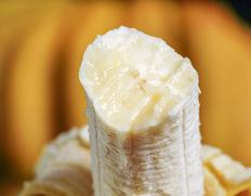 4/24出荷◇ 『台湾バナナ』北蕉種 大房 1.5kg以上【5房まで送料一口】※常温