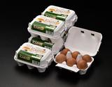 田子たまご村 「にんにく卵」 6個×6(計36個)の商品画像