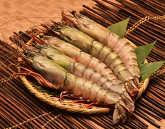『天然シータイガー』約100g×有頭5尾(ブラックタイガー、ウシエビ)ミャンマー産 ※冷凍