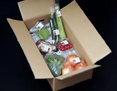 さぬき こだわり市厳選『朝穫れ直送!野菜セット(目安として5〜8種類)』 香川県産 ※冷蔵