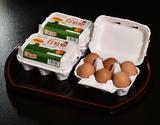 【定期購入】田子たまご村 放し飼い「有精卵」 6個×3(計18個)の商品画像