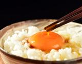 【定期購入】田子たまご村 放し飼い「有精卵」 6個×6(計36個)の商品画像