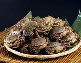 『トゲクリガニ(桜蟹)』青森県陸奥湾産 メス 約1kg ※冷蔵の商品画像