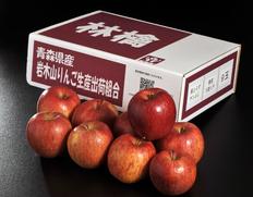 3/2〜7出荷 糖度15度以上『スペシャルランク サンふじ』青森県産りんご 約3kg(7〜13玉)岩木山りんご生産出荷組合