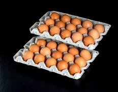 田子たまご村 「にんにく卵」 30個 ※常温