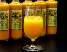 『シーベリー100%果汁』 北海道産 希釈タイプ無糖 300ml×6本