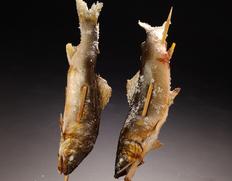 『四万十川 天然鮎 (火振り漁) 』約600g(3〜12尾程度)高知県産 ※冷凍