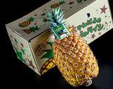 玉城忠雄氏の希少パイン『タダオゴールド』沖縄県産パインアップル 1玉 約1.5kg ※冷蔵の商品画像