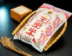 11/30〜12/12出荷 漢方環境農法『天栄米』福島県産コシヒカリ 10kg(5kg×2袋)白米【令和元年度産】