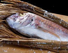 讃岐名産『天然真鯛の濱焼き』 香川県産 8人前(1.7〜1.8kg) ※冷蔵
