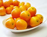 完熟金柑『たまたま』宮崎県産 秀品 2L〜3Lサイズ 約1kg ※常温の商品画像