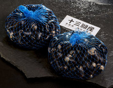 青森十三湖産 天然活しじみ(2L・1kg) ※冷蔵