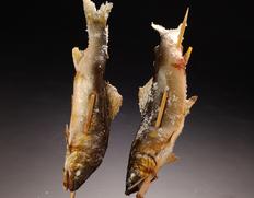 四万十川 天然鮎 (投げ網漁) 約1kg(5〜10尾程度)高知県産 ※冷凍