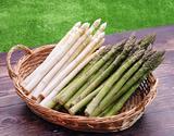 【有機JAS認証】『アスパラガス(ホワイト3L/グリーン2L 各500g』北海道産 ※冷蔵の商品画像