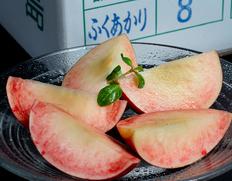 7〜9月の間で順次出荷◇ 菱沼農園の5品種桃リレー(福島県オリジナル品種 はつひめ、ふくあかり、あかつき、かぐや、黄ららのきわみ)各回約2kg 福島県産