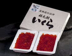 「銀聖 醤油漬いくら」北海道日高沖産 150gx2 プラ化粧箱入 ※冷凍【★】#元気いただきますプロジェクト