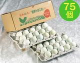 【不揃い】田子たまご村「緑の一番星」 75個の商品画像